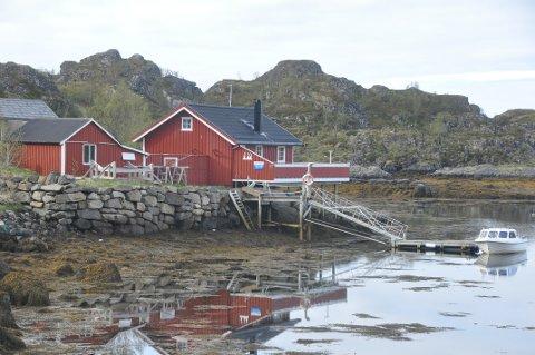 STOR INTERESSE: Eiendomsmegler 1 opplevde stor interesse for denne hytta på Steine på Vestvågøy.