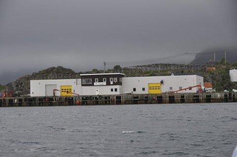 SOLGT: Olavsen-bruket på Steine er solgt til  Even Carlsen. - Jeg håper det blir fiskekjøp igjen, sier han.
