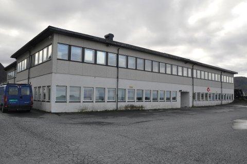 ELBIL: Rådmannen anbefaler at Flakstad kommune kjøper sin første elbil.