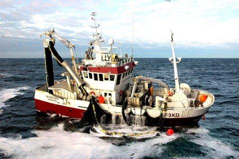 KJEMPESTART: Sildefiskerne har fått en kjempestart på sesongen.