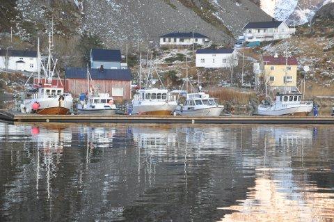 KYSTFLÅTEN: Moskenes hadde innvendinger mot programmålene for Lofoten - de grønne øyene når det gjelder kystflåten. Illustrasjonsfoto: Magnar Johansen