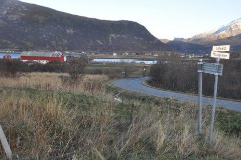VEISTRID: Statsforvalteren vil ikke undersøke Vestvågøy kommunes handlemåte da veien Lilleeid ble gitt bort i fjor.