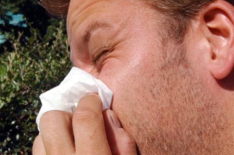 TØFF SESONG: Pollensesongen er allerede i gang og i føllge ekspertene kan årets sesong bli ekstra utfordrende.