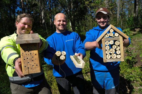 BIEHOTELL: Hans Jørgen Kvilesjø (fra venstre), Wilhelm Hovde Buberg og Sivert Solbakk har laget biehotell som en del av Tomb videregående skoles prosjekt for å tilrettelegge for insekter.