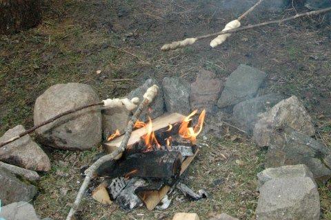 BÅLFORBUD: Det er nå ikke lov å tenne bål hvis du skal på tur i skogen. Bruk kun godkjente ildplasser i Oslos utmark. Arkivfoto/illustrasjonsfoto