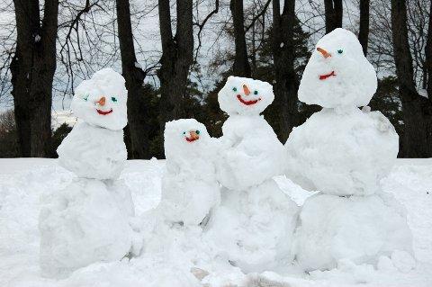 SNØFAMILIE: Har du laget en fin snømann eller bygget snøhule? Send oss et bilde, davel!  Arkivfoto: Nina Schyberg Olsen