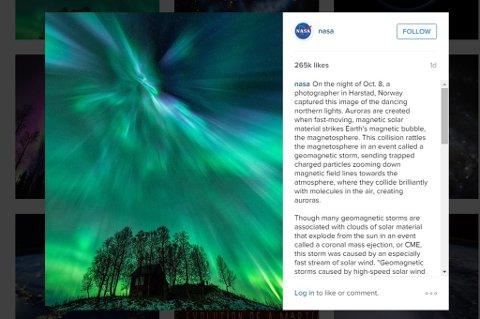 UTROLIG ENGASJEMENT: Når dette skrives har 265.000 likt bildet til Harstad-mannen.