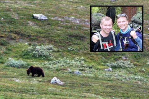 PÅ TUR: I helgen var kompisene Jan Vidar Olsen og Torbjørn Tobiassen på telt- og fisketur ved Anjavatn i Målselv. På veien tilbake kom de over denne bjørnen. Foto: Privat