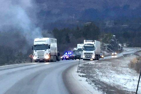 BRANN: Det brøt ut brann i en dyretransport mellom Bjerkvik og Evenes lufthavn mandag ettermiddag.