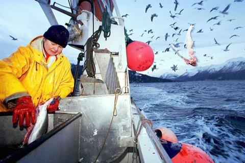 Fiskerne i Ullsfjord har kritisert universitetet for deltakelsen i det omstridte forskningsprosjektet. Nå trekker UiT seg fra Ullsfjord-prosjektet.