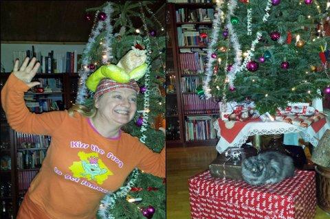 JULA VARER HELT TIL PÅSKE: Gillda Ileby foran juletreet i stua. Hatten fikk hun i julegave av søskenbarnet, og førte til mye latter da hun pakket den ut. Til høyre er katten Clara, som er veldig glad i juletreet. Foto: Privat