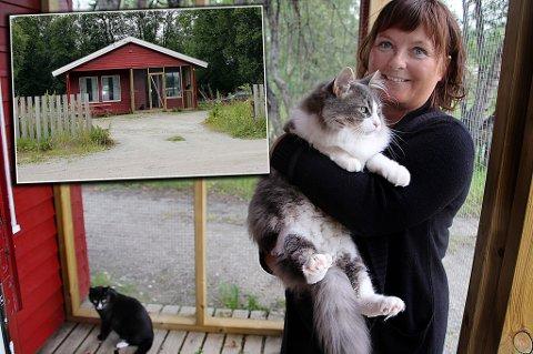 Hjelpesentralen for katter på toppen av Tromsøya, her med Anita Lavoll.