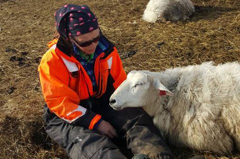 FØRSTE SAU: Her er Åshild Berg Karlsen (53) sammen med Lambi, den første sauen hun fikk.