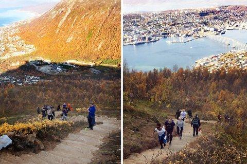 Det har vært folkevandring opp og ned sheraptrappa opp mot Fjellheisen i tromsø den siste uka. Foto: Anne May Johansen