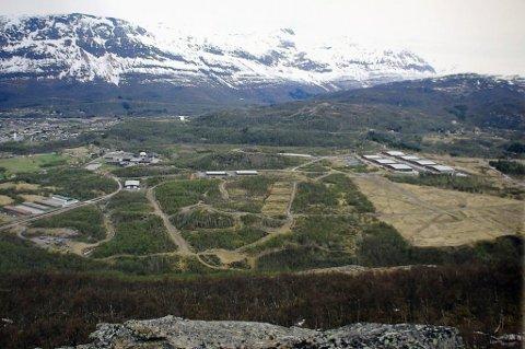 SKYTEFELT: Det var under maskingeværtreningen ved Elvegårdsmoen skytefelt at hendelsen skjedde. Foto: Arkiv/Fremover