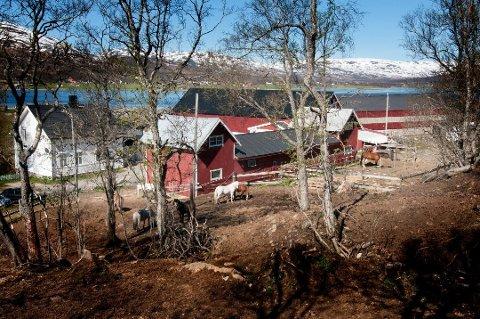 KONFLIKTRAMMET: Troms idrettskrets tok i sommer over ansvaret for Tromsø Ryttersportsklubb etter langvarige konflikter. Klubben holder til på Sandnes gård, ikke langt fra Hamna på Tromsøya.