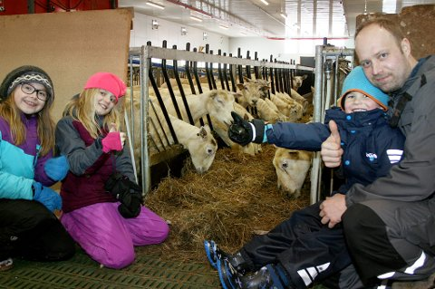 ÅLREITE DYR: Sauebonde Stian Nilsen med barna Mina, Live og Emil i det nye fjøset som stadig får flere sauer.