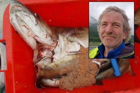 STERKE REAKSJONER: Mange reagerer på hvordan torsken Johnny Eliassen fra Karlsøy så ut da han sløyet den mandag.
