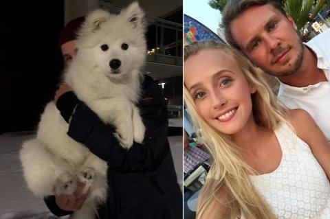 STOR GJENSYNSGLEDE: Maja Walthinsen og kjæresten Sondre Ringheim Eriksen har helt siden kvelden på nyttårsaften vært ute på leting etter samojedvalpen Saga. Gleden var stor da den lille hunden ble funnet.