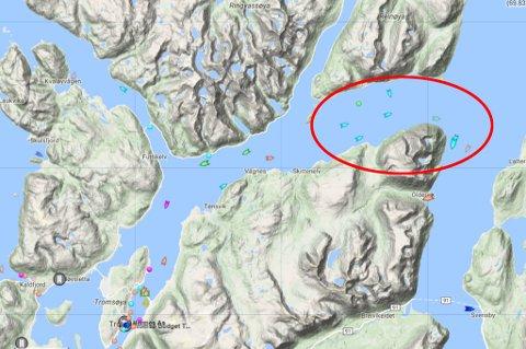 Med KV Heimdal i spissen er flere fartøyer med i søket i Grøtsundet utenfor Tromsø. Illustrasjon: Mariner traffic