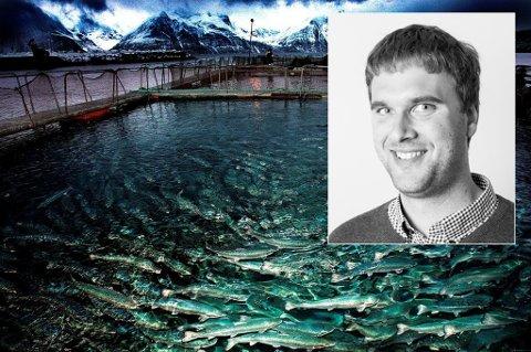 SATSER I NORD: Selskapet Steinsvik etablerer seg i Tromsø. Det kan bety seks nye arbeidsplasser i 2018, sier norgessjef i selskapet Christian Våge (innfelt).
