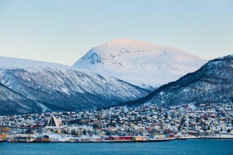 FLERE PLANTER: De siste snaut 150 årene har det blitt trangere om plassen for plantene på Tromsdalstinden. Alpine, spesialiserte fjellplanter står i fare for å bli utkonkurrert.