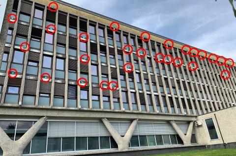 FUGLEBERG: NAV-bygget i Grønnegata i Tromsø er invadert av måker hver sommer.
