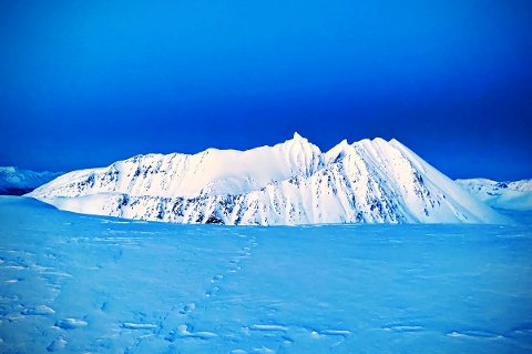Sporene går rett ut mot kanten av snøskavlen på Fagerfjell.