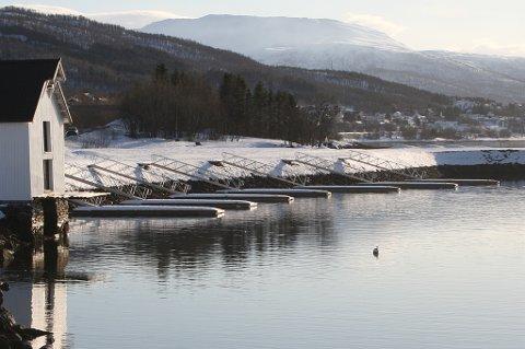 TOMT: Etter sju år ser det slik ut i fiskerihavna i Olderhamna på Finnsnes.
