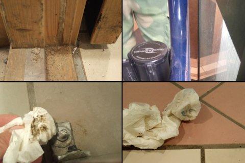 IKKE RENT: Bildene viser noen av funnene som ble gjort under inspeksjonen av spisesalen på Skjold torsdag.