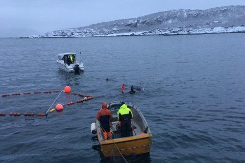 - IDIOTI: Turister på hvalsafari svømmer noen få meter fra båter og redskap under sildefisket i Nord-Troms. Bildet er tatt nær Skjervøy høsten 2017.