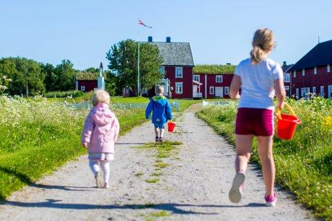 SOMMER: Barn som leker på Tranøya sør på Senja.