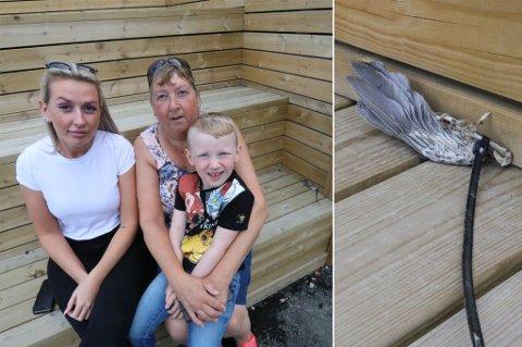 SJOKKERT: Victoria Reiersen, Britt Judith Reiersen og barnebarnet Johannes (4,5 år) fikk ingen hyggelig start på dagen.