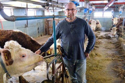 DRENG: Etter å ha måttet kvitte seg med melkekyrne for fem år siden, har den MS-rammede gårdbrukeren Einar Nikolaisen fått andre dyr å passe i fjøset.