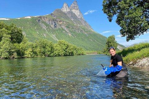 NY FISK: Lotta Sommerseth Rognli viser hvordan en setter ut yngel, med Otertinden i bakgrunnen.