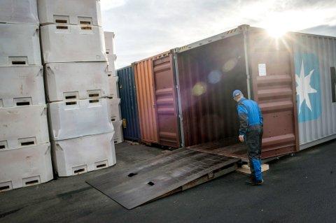 CONTAINERFRAKT: Den ferdigtørkede fisken går rett inn i en container og skipes til Nigeria.