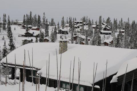 Snøvinteren i Vestoppland har så langt ikke skapt problemer for de mange tusen hyttetakene. Servicefolkene mener likevel at det er smart å måke taket nå. Foto: Ingvar Skattebu