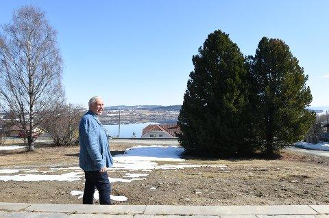 MISTER ALL UTSIKT:- Utsikten mot Nes-landet kan jag bare glemme hvis vedtaket står seg, sier Even Skavhaug.