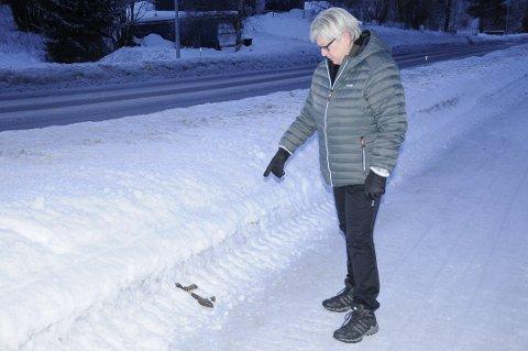 LEI: Turid Solberg er svært lei av hundeeiere som ikke plukker opp etter hunden sin på Reinsvoll. Hun ber folk skjerpe seg.