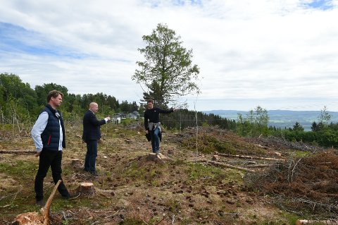 UTSIKT: De nye boligene får utsikt mot søndre delen av Mjøsa. F.v Nils Kristian Raddum, Torvild Sveen og Simen Fossen.