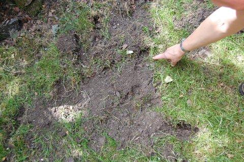 HULL: Den som har vært på besøk nattetid, har laget mange hull i hagen.