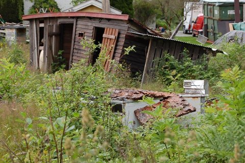 SKJEMMENDE: 14 av 50 tips om forsøpling og forurensing gjaldt området Gjevik nordøst for Langen.