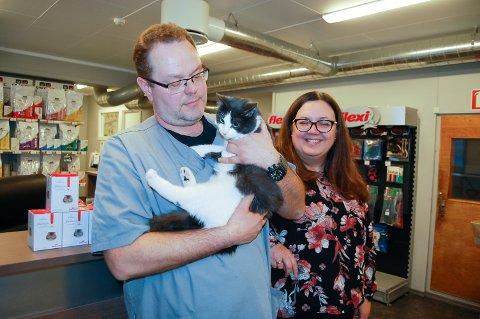 CHIPPET: Katten Mons er chippet. Veterinær Casper Hoelstad og daglig leder Janne Myrhaug på Holstad veterinærkontor oppfordrer alle katteeiere å sørge for at dyret blir id-merket.