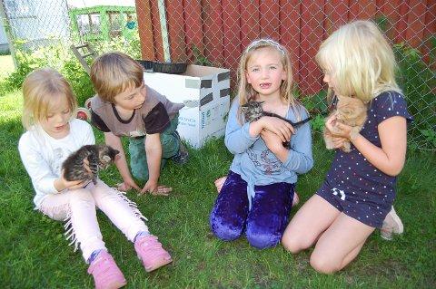 DAGENS OVERRASKELSE: Gjett hva ungene i Åkebakke barnehage har å fortelle om når de kommer hjem. Fra venstre Aida (5), Martin, Astrid () og Rigmor (6).