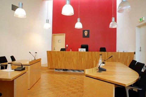 TILSTÅTT: 35-åringen har tilstått forholdene han var siktet for. Dermed gikk rettssaken i Follo tingrett som en tilståelsessak.