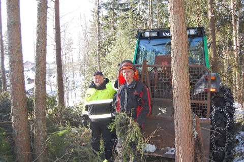 TYNNER I SKOGEN: Skogebestyrer Reidar Haugen (til venstre) og skogsarbeider Svein Gustavsen skjønner at folk i Måltrostveien vil ha kveldssola tilbake. Det får de nå.