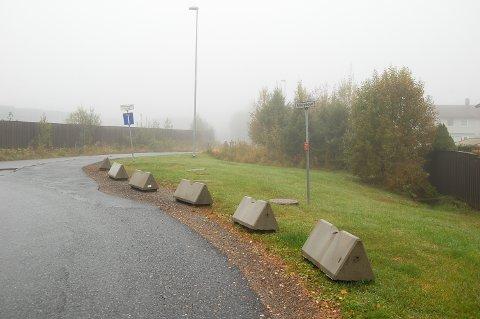 STENGT FOR PARKERING: Ski kommune svarte med å sette opp betonggriser for å hindre parkering på grøntarealet langs Grenseveien.