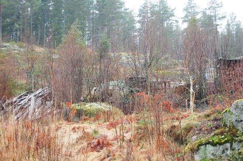 SKJEMMENDE: Ski kommune har pålagt eieren av tomta å rydde opp. Da det ikke skjedde innen fristen, begynte dagmulkten å løpe med 200 kroner hver dag innen det blir gjort.