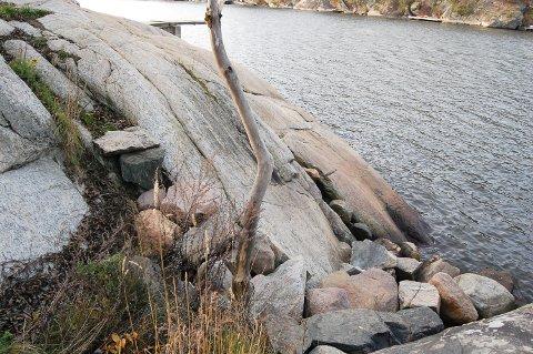 BADETRAPP: Steinmannen startet sin gjerning på Breivoll for ti år siden. Da la han stein fra ei steinrøys og laget en trapp for å gjøre det lettere for badende å komme seg opp av vannet og inn på land.