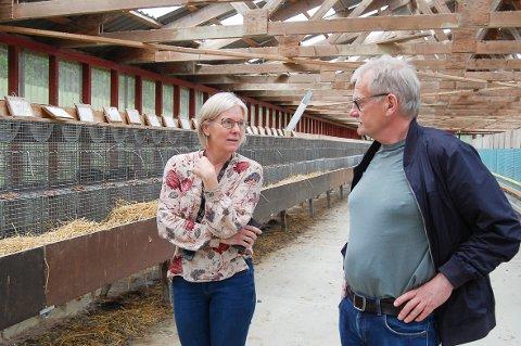 PELSDYRGÅRDEN: 40 hannmink er det som er igjen av pelsdyravdelingen på NMBU. Dekan Kari Kolstad og professor i husdyrernæring Øystein Ahlstrøm ved Fakultet for biovitenskap har det overordnede ansvaret.